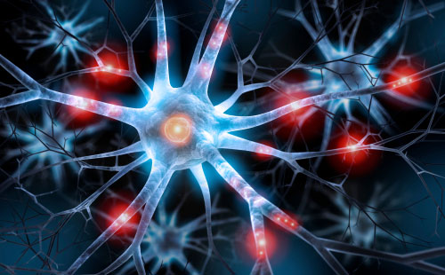 Illustration of nerve cell. Contact our Orange County nerve damage injury lawyers today!